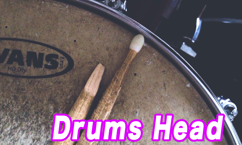 ドラムヘッドの種類と特徴